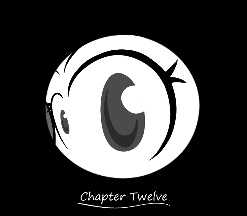 Chapter Twelve Cover